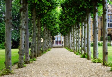 Skab en flot og praktisk have