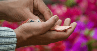 Skal du låne penge til at skabe en flot have?